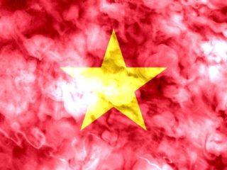 越南调查网站